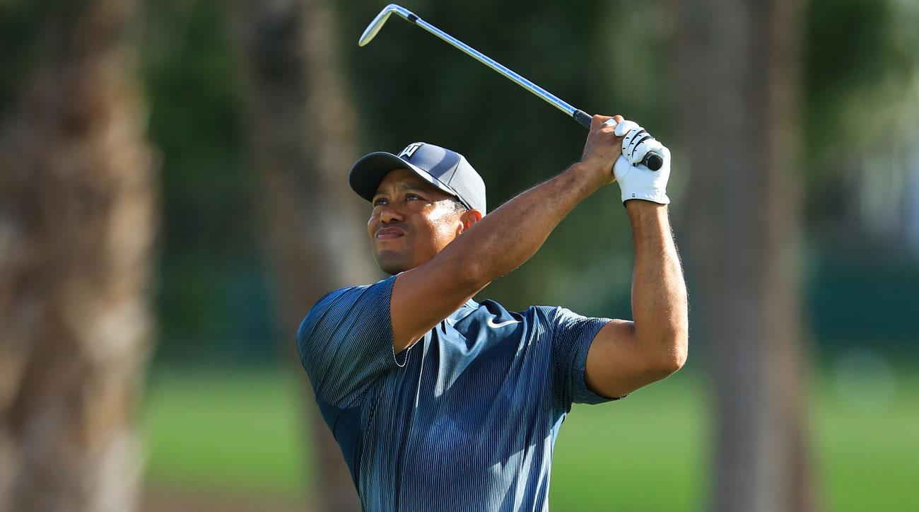 Tiger escapes woods after smashing club on trees at No. 16