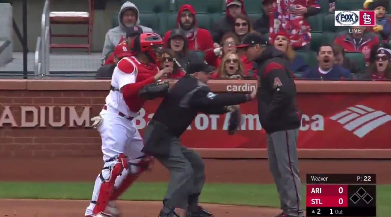 Yadier Molina tries to fight manager in benches-clearing face-off