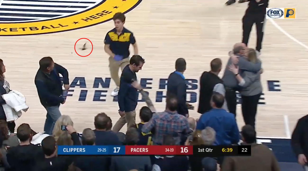 Video: Pacers-Clippers game delayed by bat, Myles Turner tries to kick it