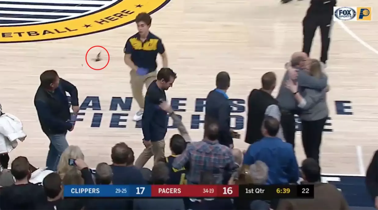 Indiana Pacers, la clippers, pacers bat, rabies, pacers rabies