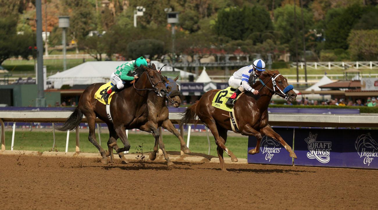 Santa Anita Racetrack 21 Horses Die At California Track