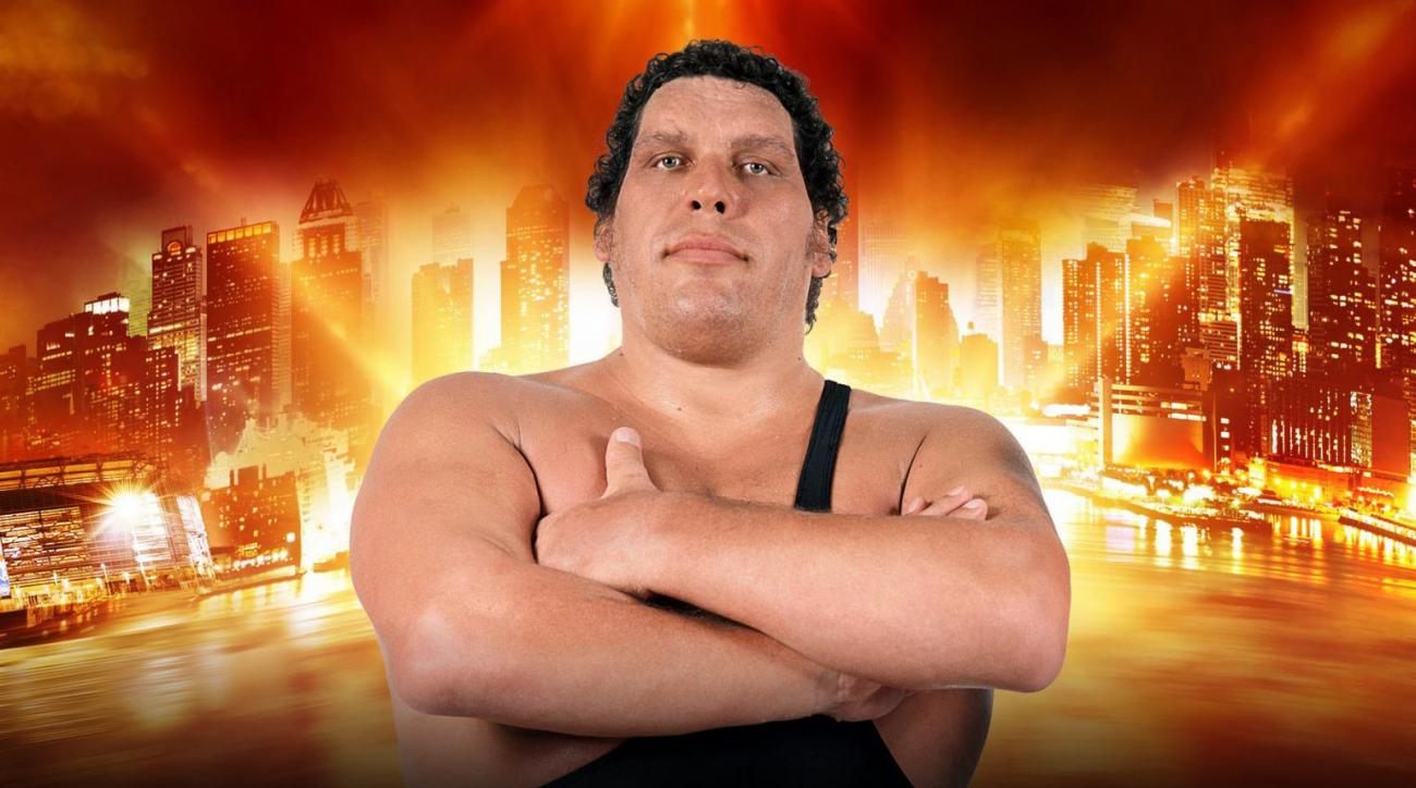 Full List of Andre the Giant Memorial Battle Royal Participants