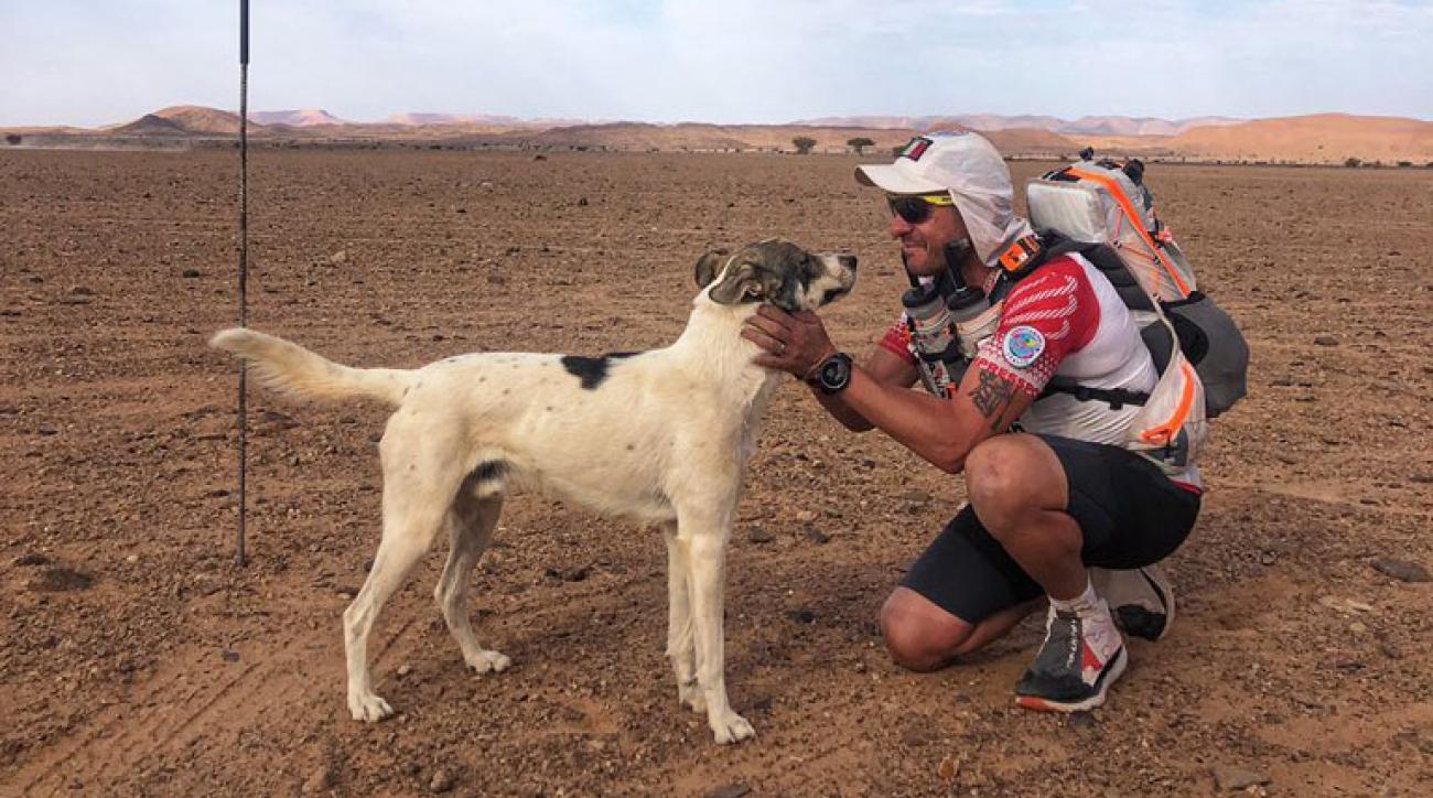 Marathon des Sables: Cactus the dog continues race (photos)