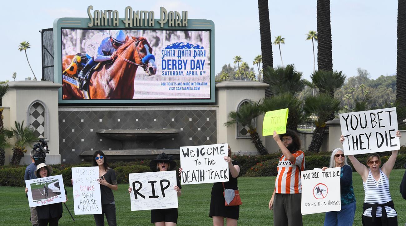 horse racing, Santa Anita, kochees