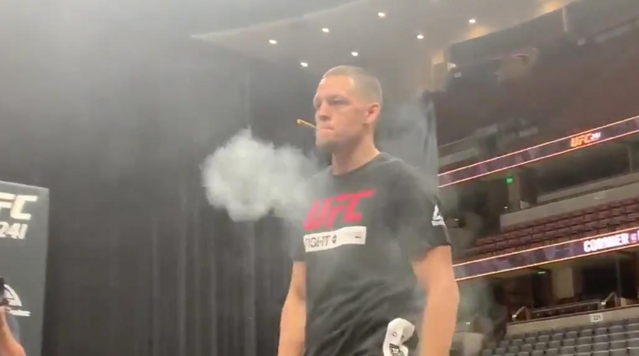 mma, Nate Diaz, UFC 241, Anthony Pettis