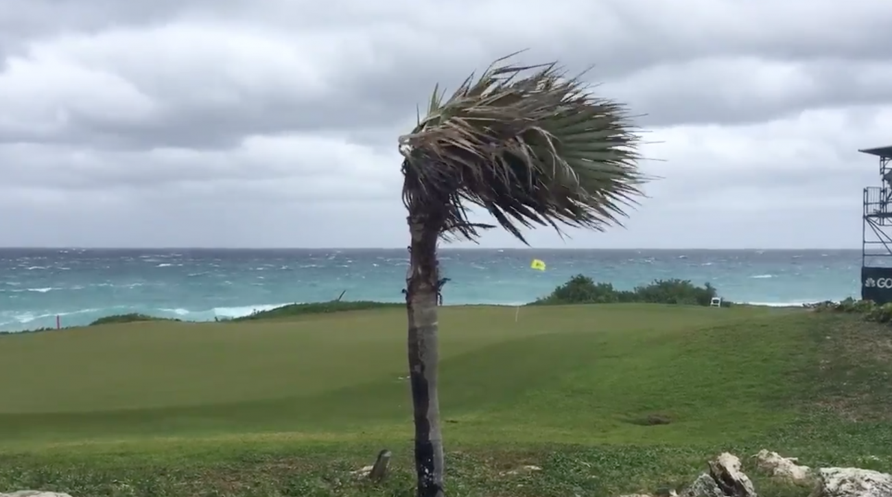 Wind whips across a green at the Web Dot Com season opener.