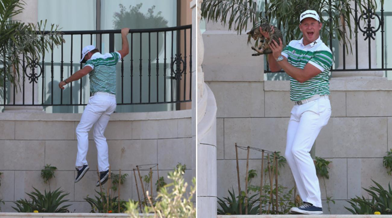Jamie Donaldson clambered up the Jumeirah Golf Estates clubhouse to fetch a stranded cat following the third round of the DT World Tour Championship.