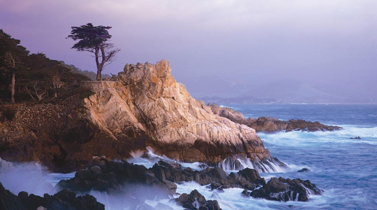 The lone cypress near Pebble Beach Golf Links is among the most photographed trees in North America.