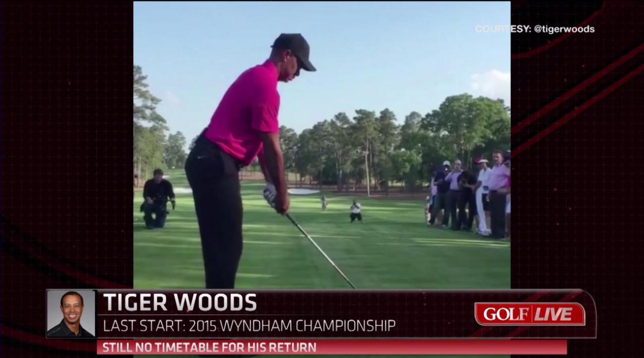 Tiger Woods Could Be Part Of Chicago Area Course