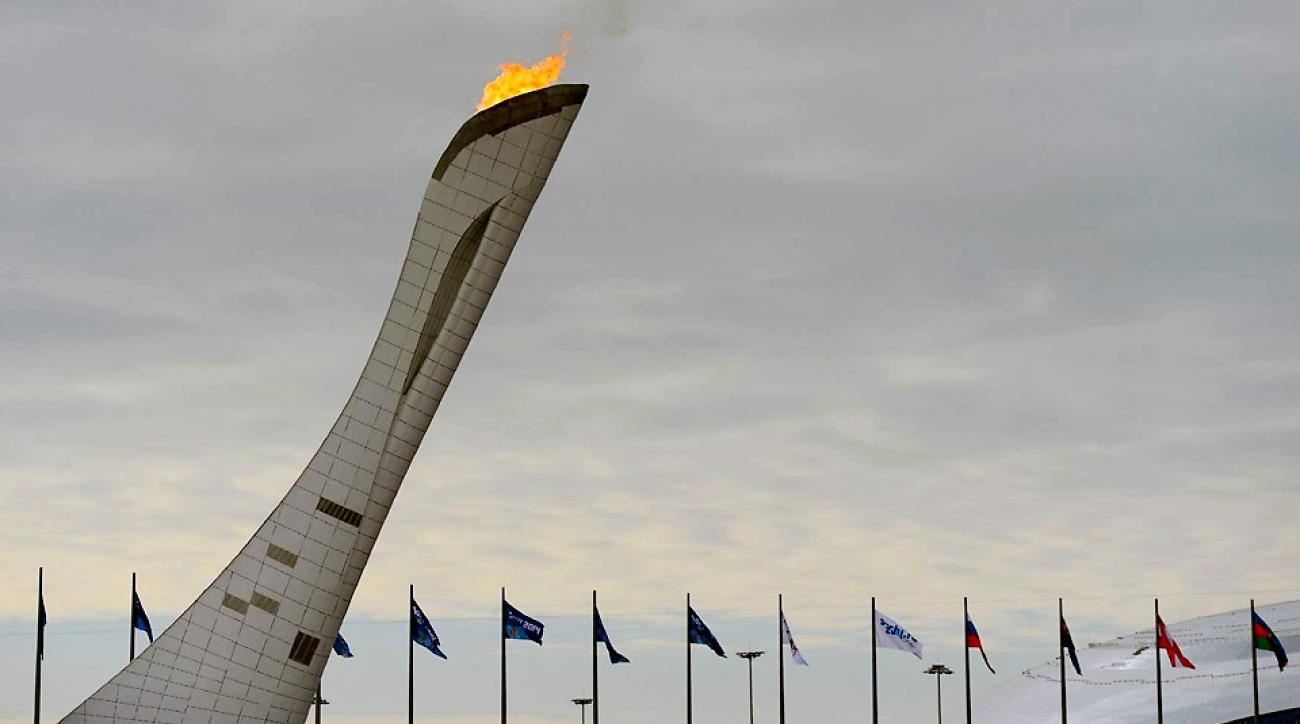 Sochi avoided major calamity, for the most part, while hosting the Olympics, but does that makes the games a success?