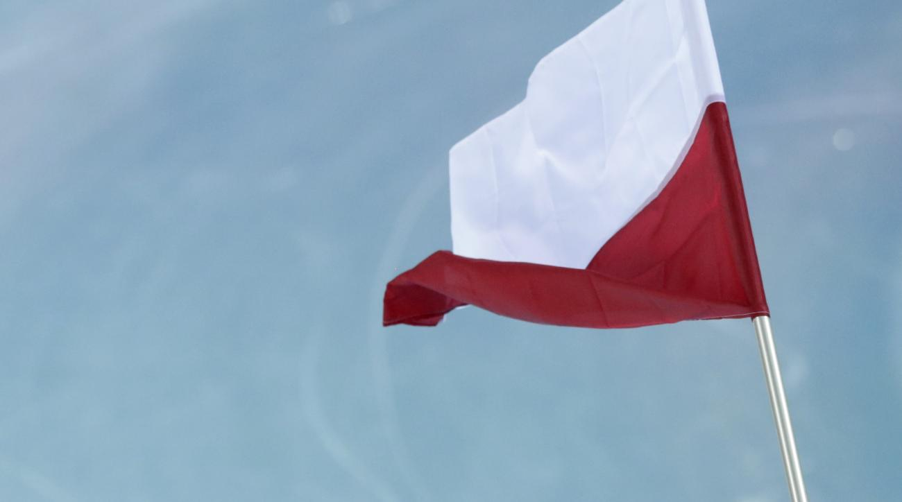 Gold medallist Poland's Zbigniew Brodka holds his national flag and celebrates after the men's 1,500-meter speedskating race at the Adler Arena Skating Center during the 2014 Winter Olympics in in Sochi, Russia, Saturday, Feb. 15, 2014. (AP Photo/Matt Dunham)