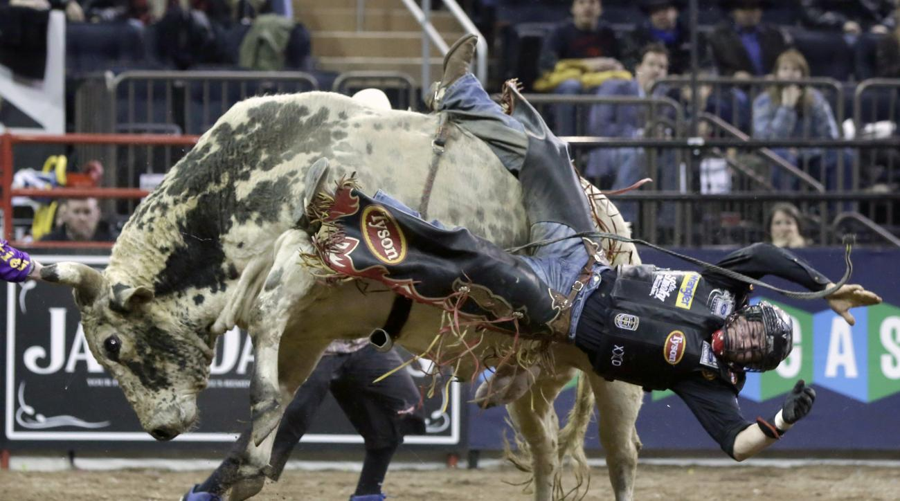 FILE - In this Jan. 17, 2015, file photo, Chase Outlaw, of Hamburg, Ariz., dismounts Sun Dome during the Professional Bull Riders Buck Off, in New York's Madison Square Garden. Serious injuries are occupational hazards for bull riders, but doctors, riders
