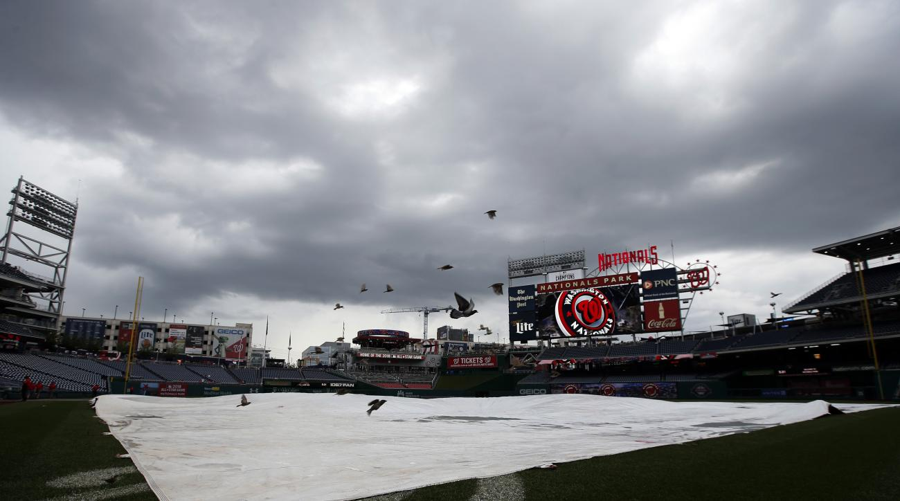 Birds fly over the tarp on the field as the rain falls before a baseball game between the Washington Nationals and the Cincinnati Reds at Nationals Park, Wednesday, July 8, 2015, in Washington. (AP Photo/Alex Brandon)