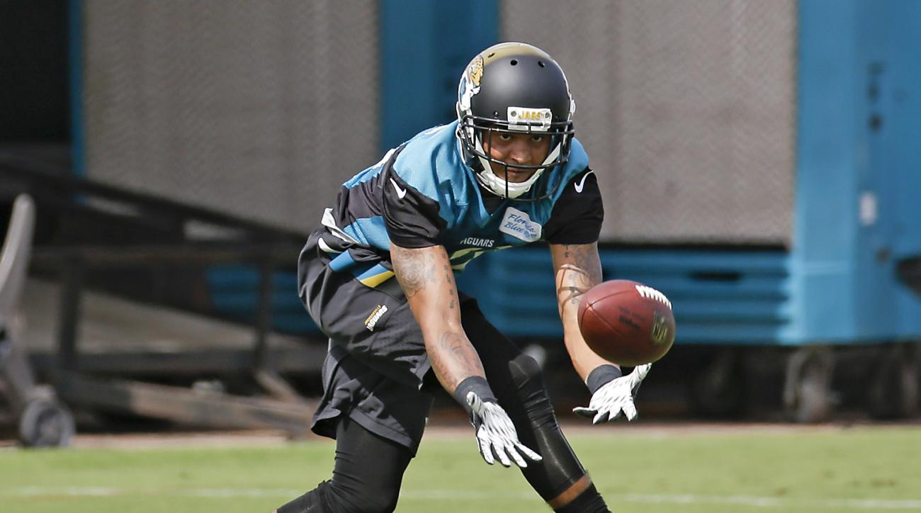 Jacksonville Jaguars Rashad Greene catches a pass during NFL football organized training activities, Tuesday, May 26, 2015, in Jacksonville, Fla. (AP Photo/John Raoux)