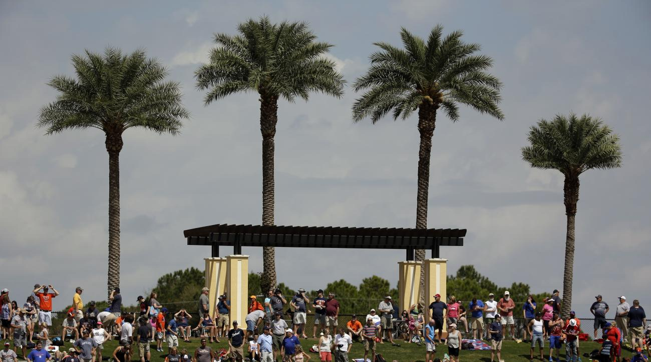 Fans watch a spring training baseball game between the Detroit Tigers and the New York Mets from a hill behind the left field wal Monday, March 14, 2016, in Lakeland, Fla. (AP Photo/John Raoux)