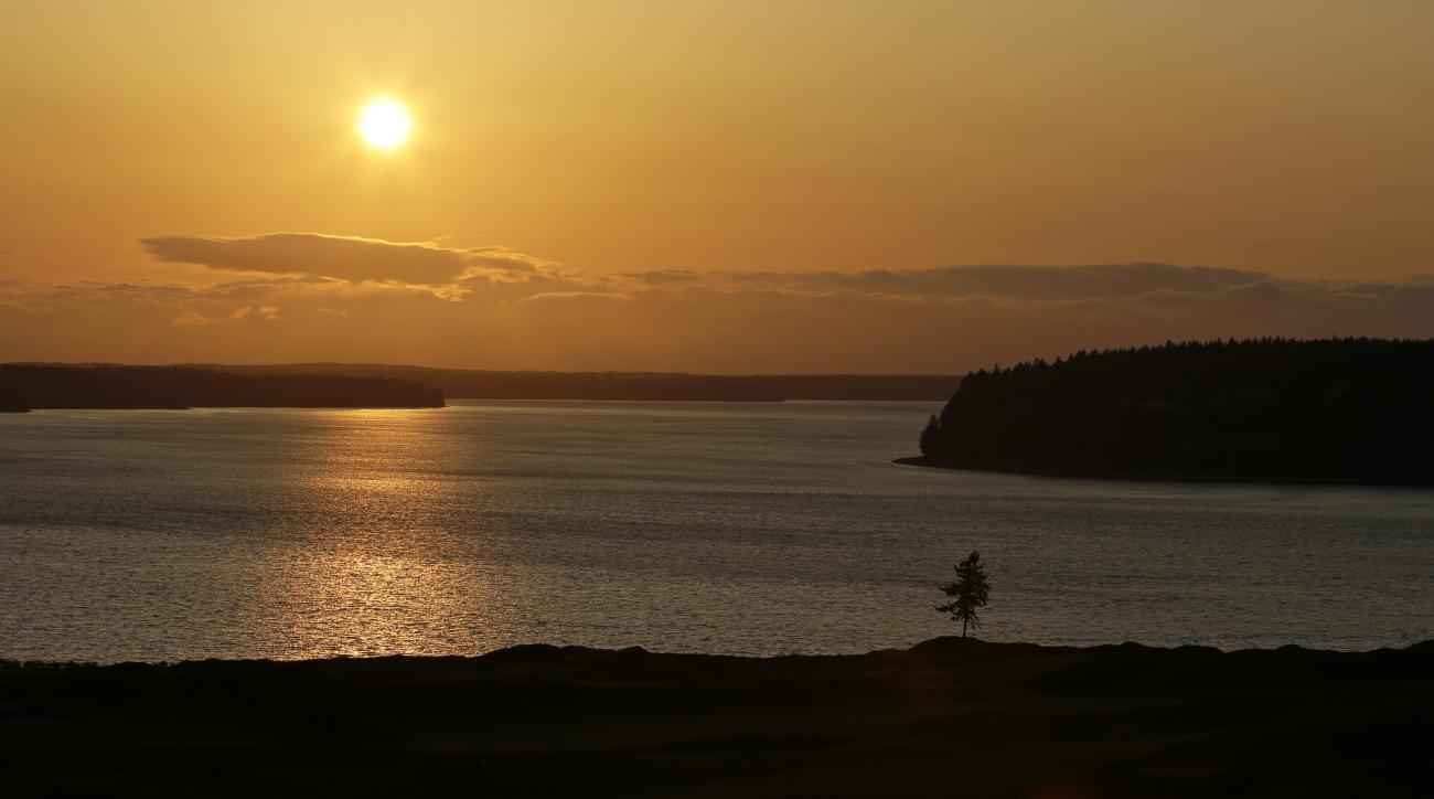 In this April 29, 2015, photo, the signature lone fir tree at Chambers Bay golf course stands at sunset in University Place, Wash. Chambers Bay will host the 115th U.S. Open golf tournament next week, but the course is a mystery to the majority of the pla