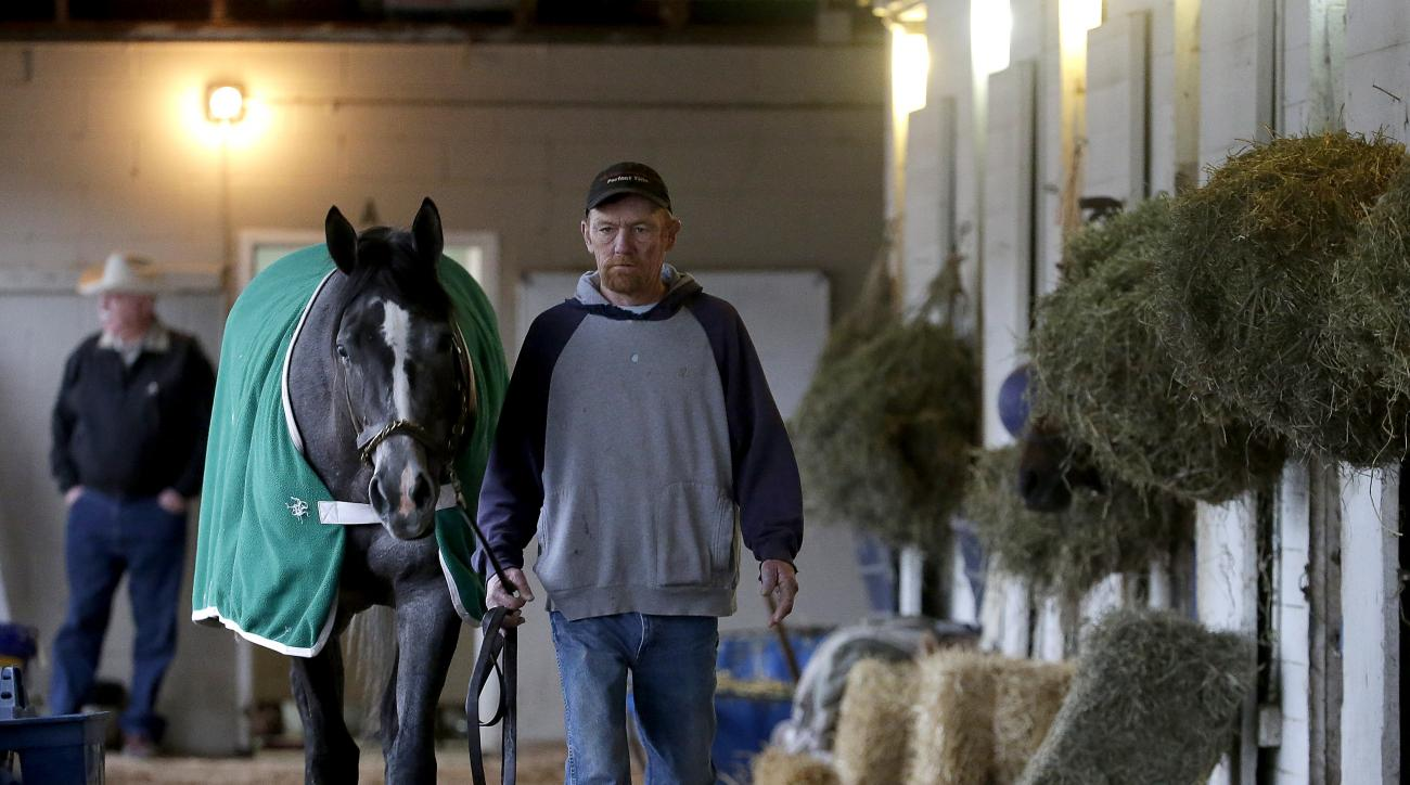Hot walker Mike Wells walks Mizz Money in a loop at the barn where he works at Churchill Downs Thursday, April 30, 2015, in Louisville, Ky. Wells walks several miles a day without leaving the barn leading thoroughbreds as they cool off after working out o