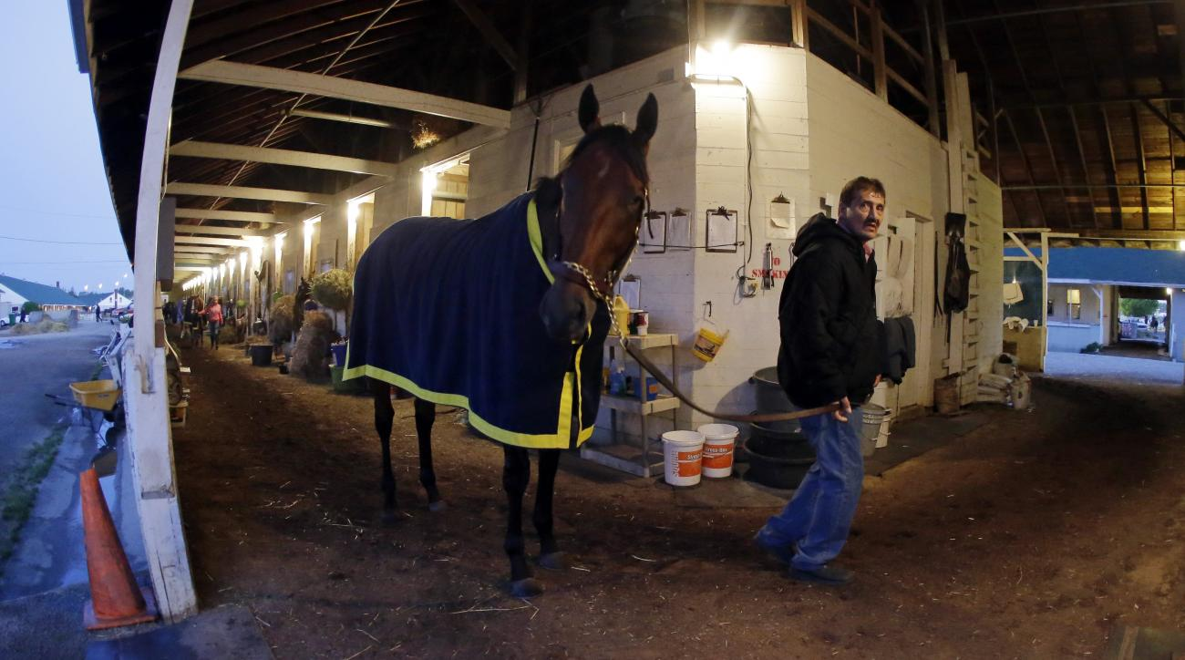 Kentucky Derby entrant American Pharoah is walked after a morning workout for the 141th running of the Kentucky Derby horse race at Churchill Downs Friday, May 1, 2015, in Louisville, Ky. (AP Photo/Darron Cummings)