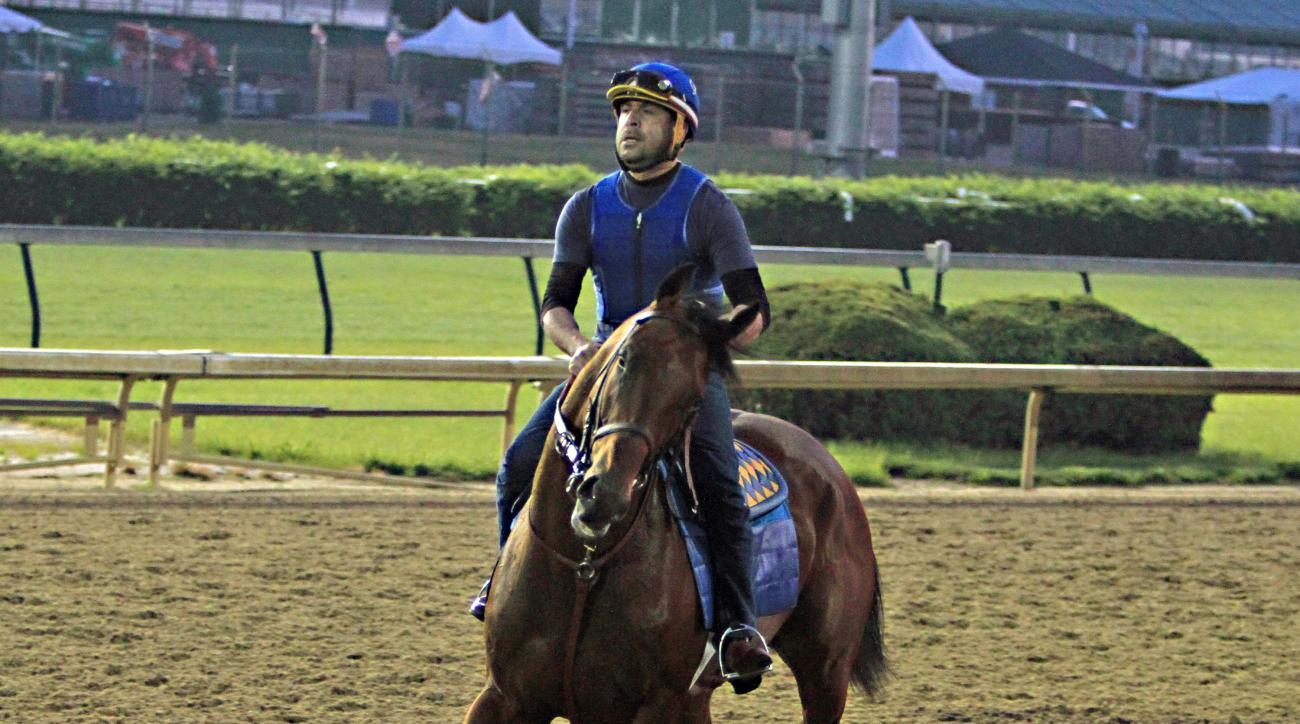 Exercise rider Jorge Alvarez jogs Kentucky Derby winner American Pharoah the wrong way around the track at Churchill Downs in Louisville, Ky., Thursday, May 7, 2015. American Pharoah is training at Churchill Downs before heading to Baltimore for The Preak