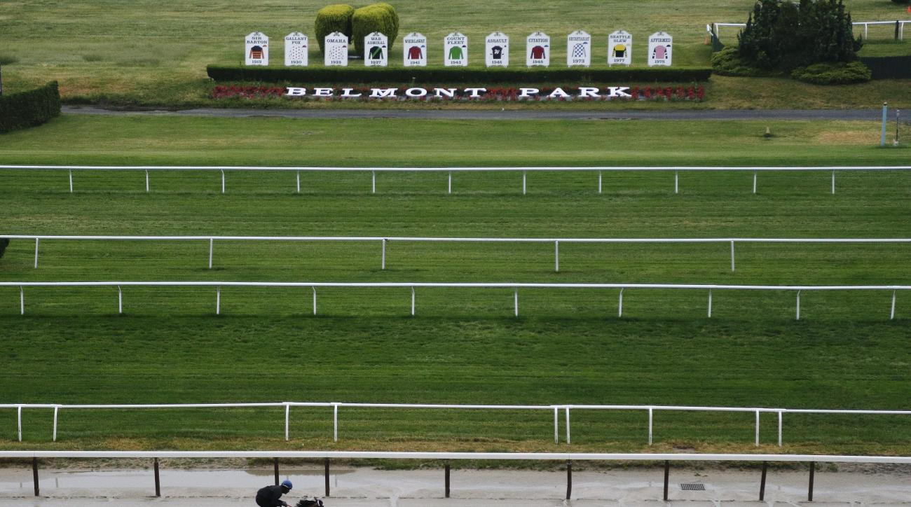 Tale of Verve works out on the main track at Belmont Park, Tuesday, June 2, 2015, in Elmont, N.Y. Tale of Verve is expect to run Saturday, June 6, in the Belmont Stakes horse race, where Kentucky Derby and Preakness winner American Pharoah will try for a