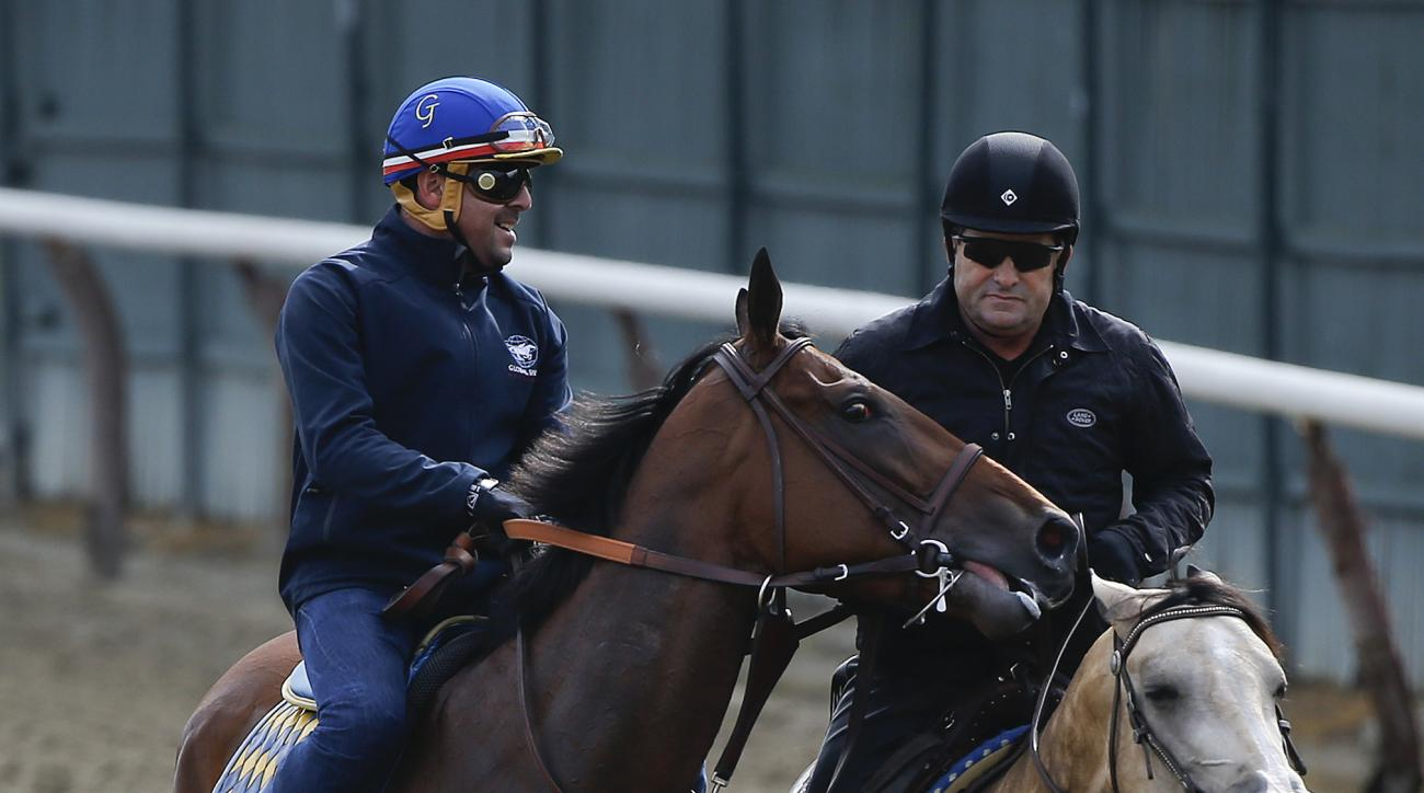 Kentucky Derby and Preakness Stakes winner American Pharoah, left, with exercise rider Jorge Alvarez up, is led off the track by assistant trainer Jimmy Barnes, after jogging around the track at Belmont Park, Wednesday, June 3, 2015, in Elmont, N.Y. Ameri