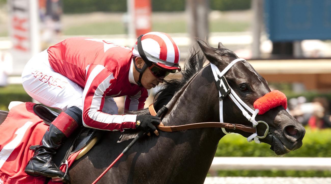 In this image provided by Benoit Photo, Patriots Rule, with jockey Fernando Perez aboard, wins the $100,000 Crystal Water Stakes horse race Saturday, June 6, 2015, at Santa Anita Park in Arcadia, Calif. (Benoit Photo via AP)