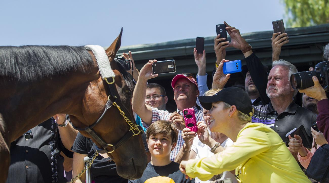 FILE - In this June 18, 2015, file photo, fans take photos and greet Triple Crown winner American Pharoah after the horse arrived at Santa Anita Park in Arcadia, Calif. Since American Pharoah completed his sweep of the Kentucky Derby, Preakness and Belmon