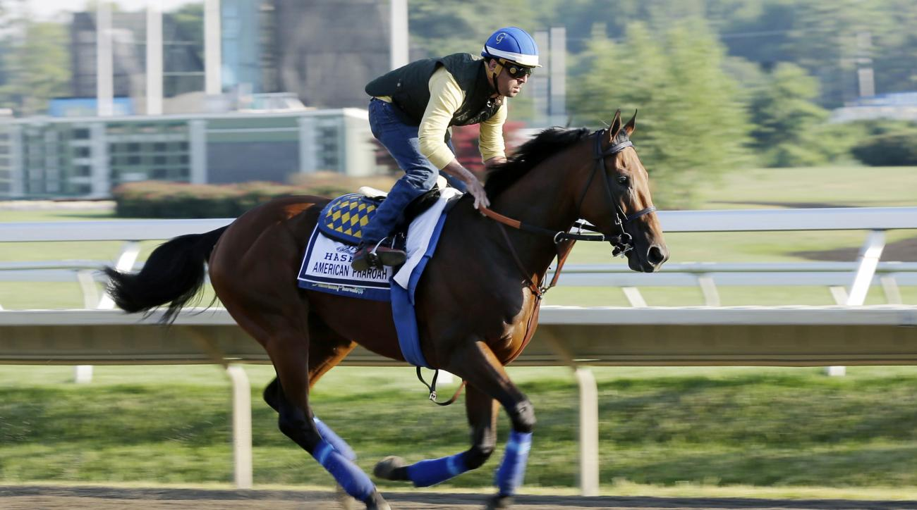 Triple Crown winner American Pharoah with Jorge Alvarez up trains at Monmouth Park in Oceanport, N.J., Saturday, Aug. 1, 2015. American Pharoah is preparing for Sunday's running of the Haskell Invitational horse race. (AP Photo/Mel Evans)