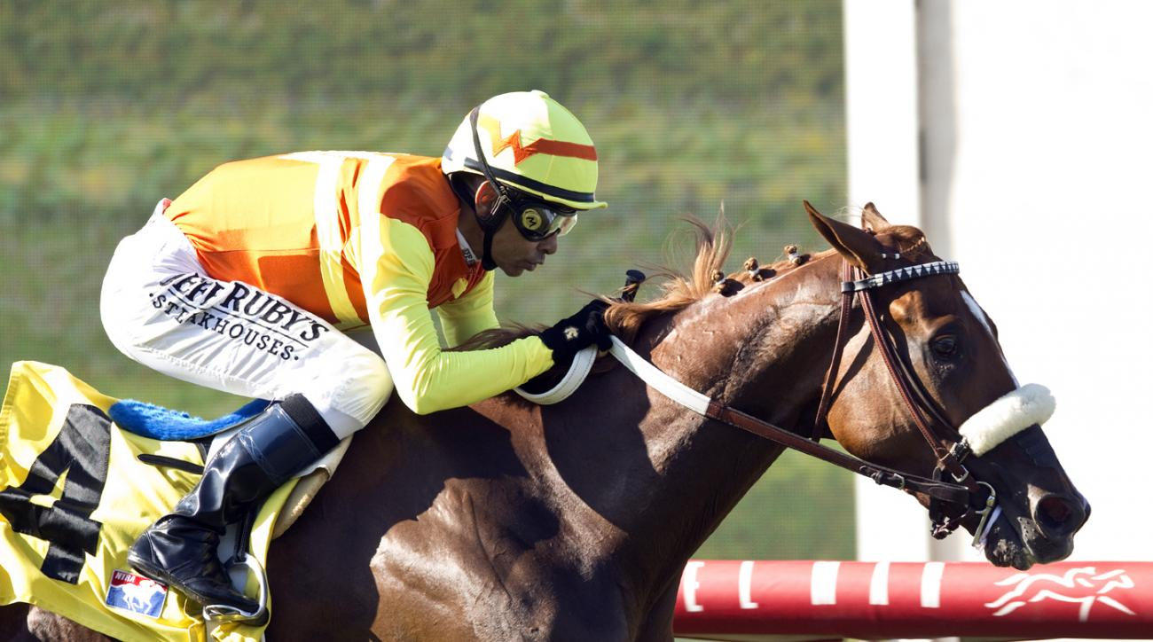In a photo provided by Benoit Photo, Curlin's Fox, with jockey Mike Smith, wins the $80,000 Sandy Blue Handicap horse race Friday, Aug. 14, 2015, at Del Mar Thoroughbred Club in Del Mar, Calif. (Benoit Photo via AP)
