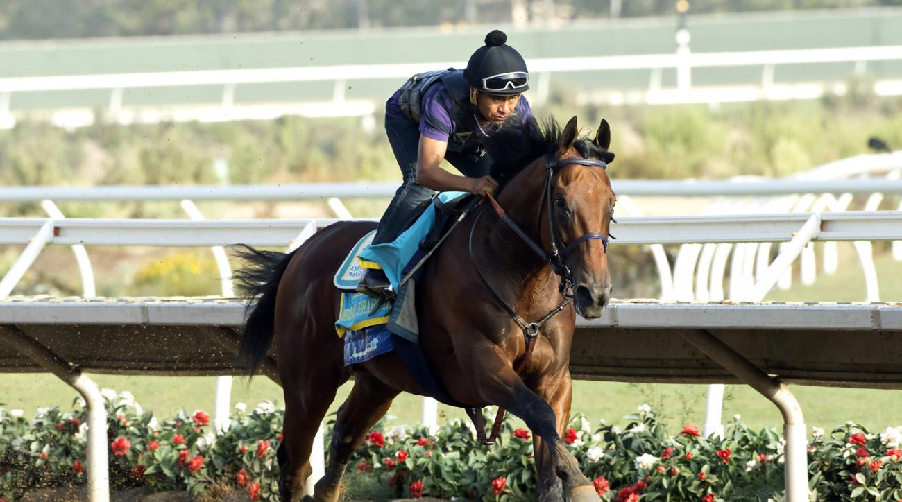 Triple Crown winner American Pharoah, Martin Garcia up, works four furlongs Sunday morning,  Aug. 16, 2015,  at Del Mar Racetrack in Del Mar, Calif.  (Benoit Photo via AP)