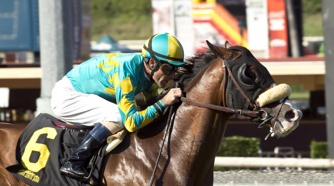 In this image provided by Benoit Photo, No Silent and jockey Gary Stevens win the Grade III, $100,000 Eddie D Stakes horse race Saturday, Oct. 3, 2015, at Santa Anita Park in Arcadia, Calif. (Benoit Photo via AP)