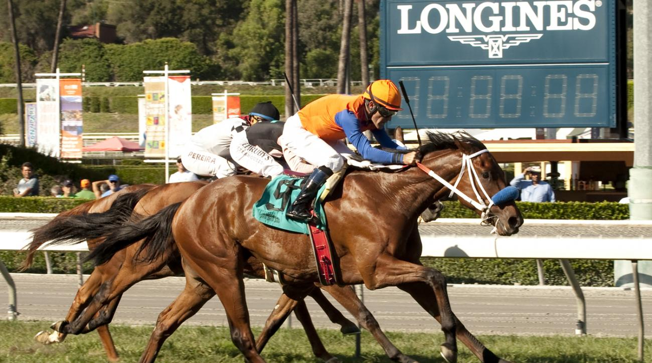 In this photo provided by Benoit Photo, Budget Stable's Dressed in Hermes and jockey Gary Stevens win the $100,000 Zuma Beach Stakes, Saturday, Oct. 10, 2015, at Santa Anita Park in Arcadia, Calif. (Benoit Photo via AP) NO SALES