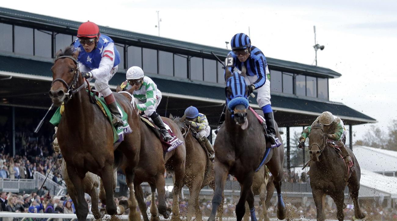 Runhappy, left, with Edgar Prado up, wins the Breeders' Cup Sprint horse race at Keeneland race track Saturday, Oct. 31, 2015, in Lexington, Ky. Private Zone (13), with Martin Pedroza up, finished second. (AP Photo/Brynn Anderson)