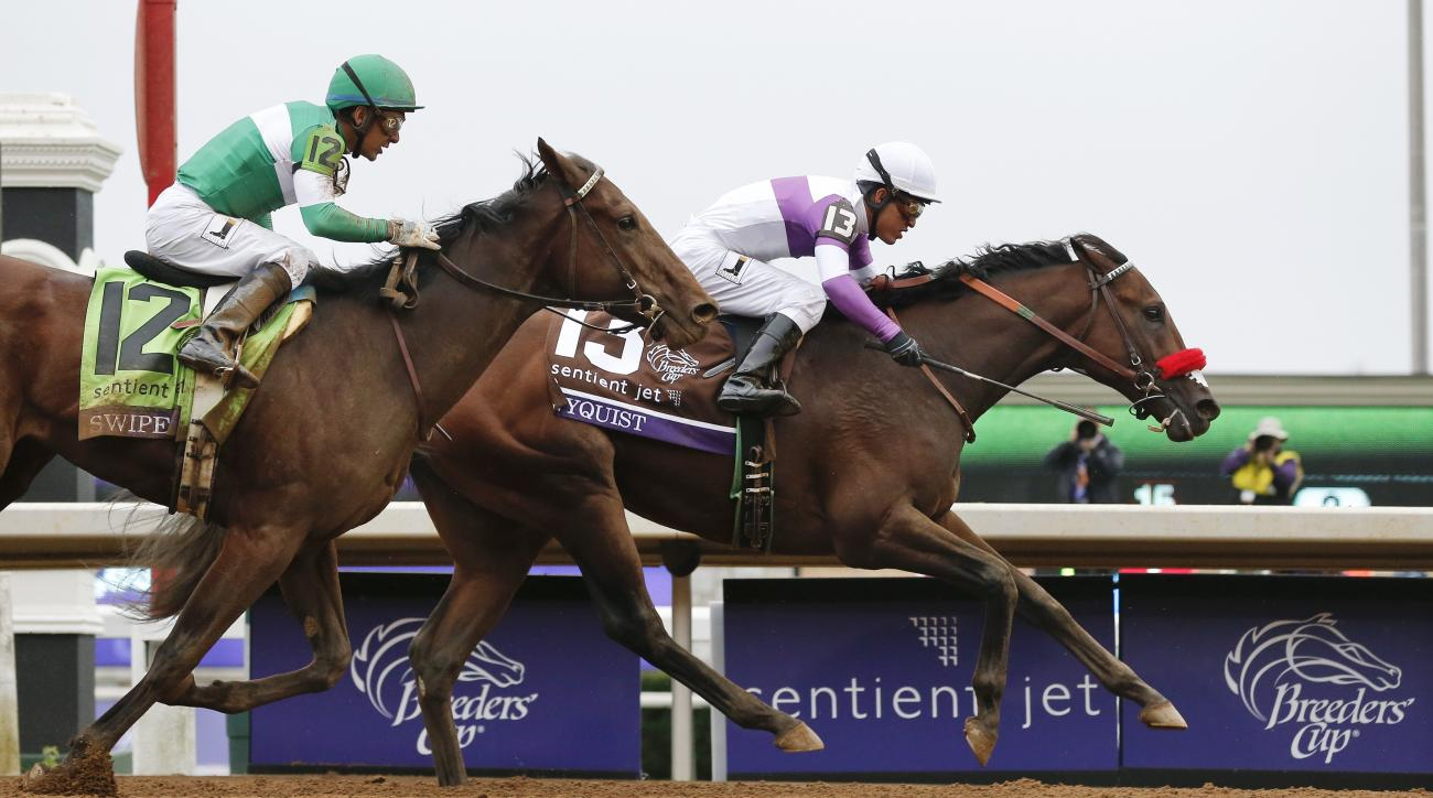 Nyquist (13), with Mario Gutierrez up, wins the Breeders' Cup Juvenile horse race at Keeneland race track Saturday, Oct. 31, 2015, in Lexington, Ky. Swipe (12), with Victor Espinoza up, finished second. (AP Photo/Brynn Anderson)