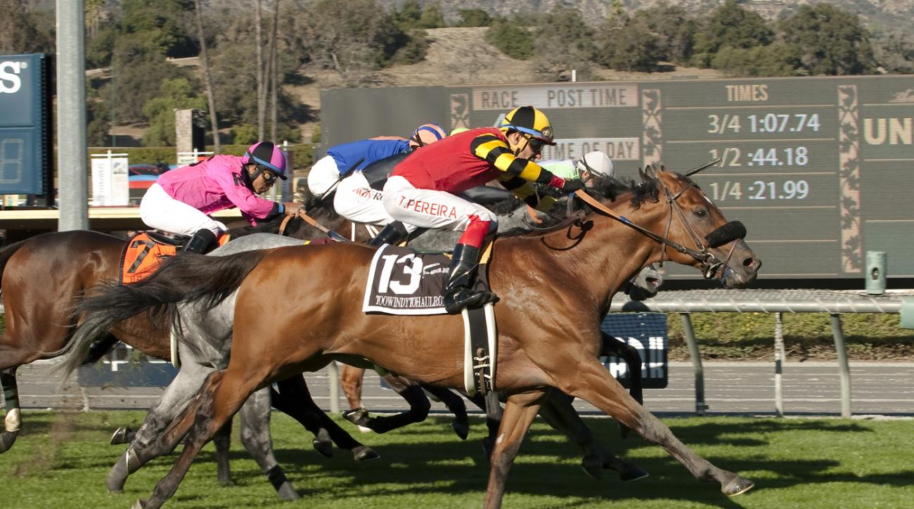 Toowindytohaulrox and jockey Tiago Pereira, outside, overpower Rocket Heat with Edwin Maldonado, inside, to win the Grade III, $100,000 Daytona Stakes horse race, Saturday, Dec. 26, 2015 at Santa Anita Park in Arcadia,  Calif. (Benoit Photo via AP) NO SAL