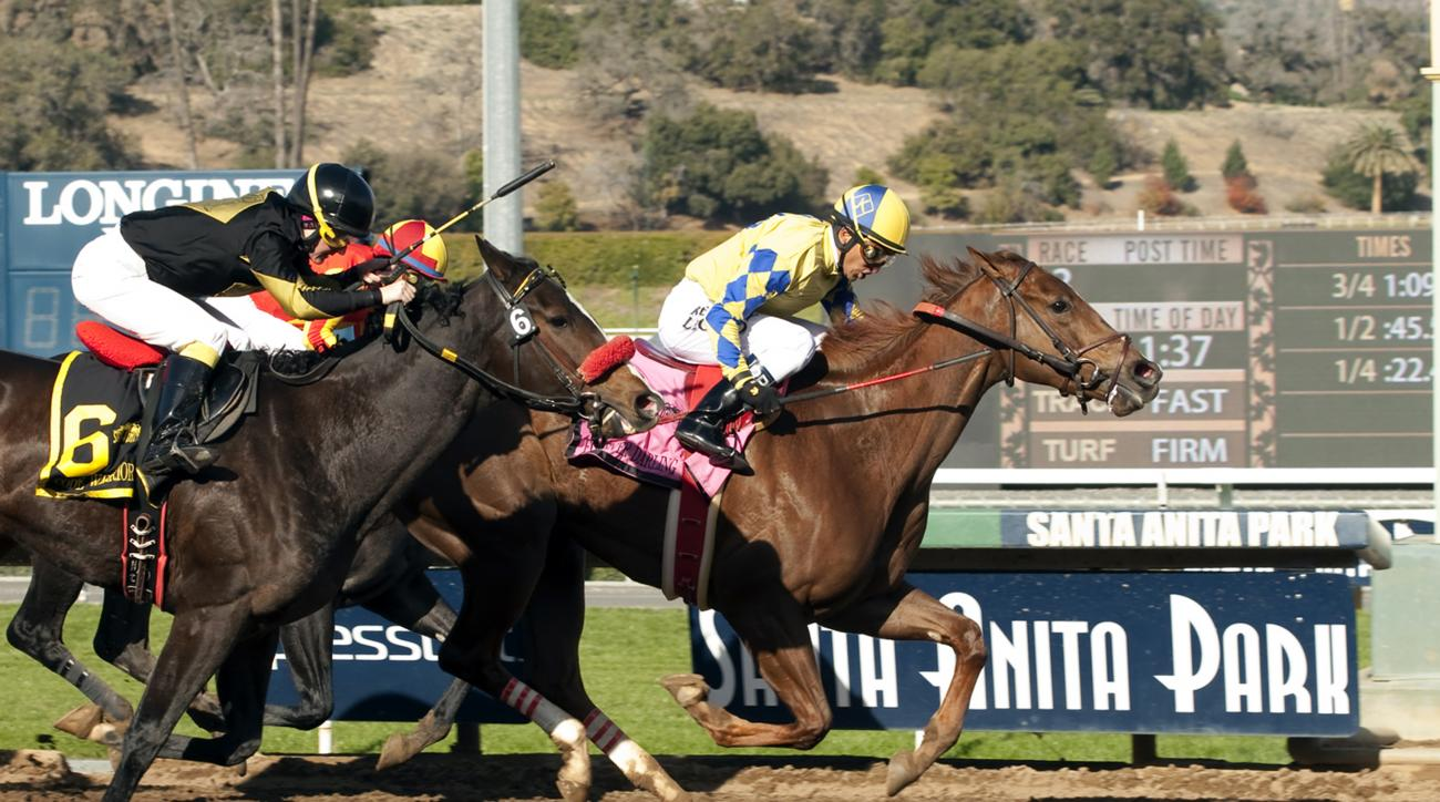In this image provided by Benoit Photo, Forever Darling, right, with Rafael Bejarano aboard, wins the $200,000 Grade II Santa Ynez Stakes horse race Saturday, Jan. 2, 2016, at Santa Anita Park in Arcadia, Calif. (Benoit Photo via AP)