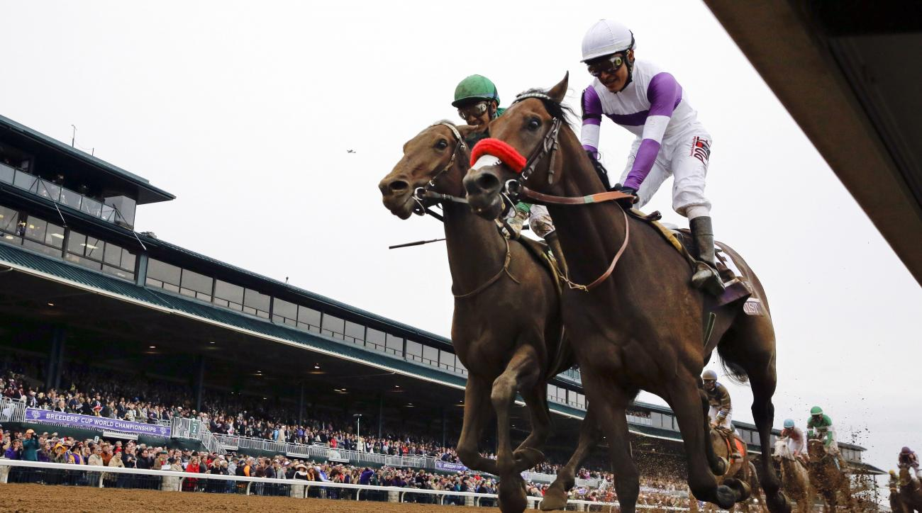 FILE - In this Oct. 31, 2015, file photo, Nyquist, front right, with Mario Gutierrez up, finishes ahead of Swipe, left, with Victor Espinoza up, to win the Breeders' Cup Juvenile horse race at Keeneland race track in Lexington, Ky. Nyquist is gearing up f