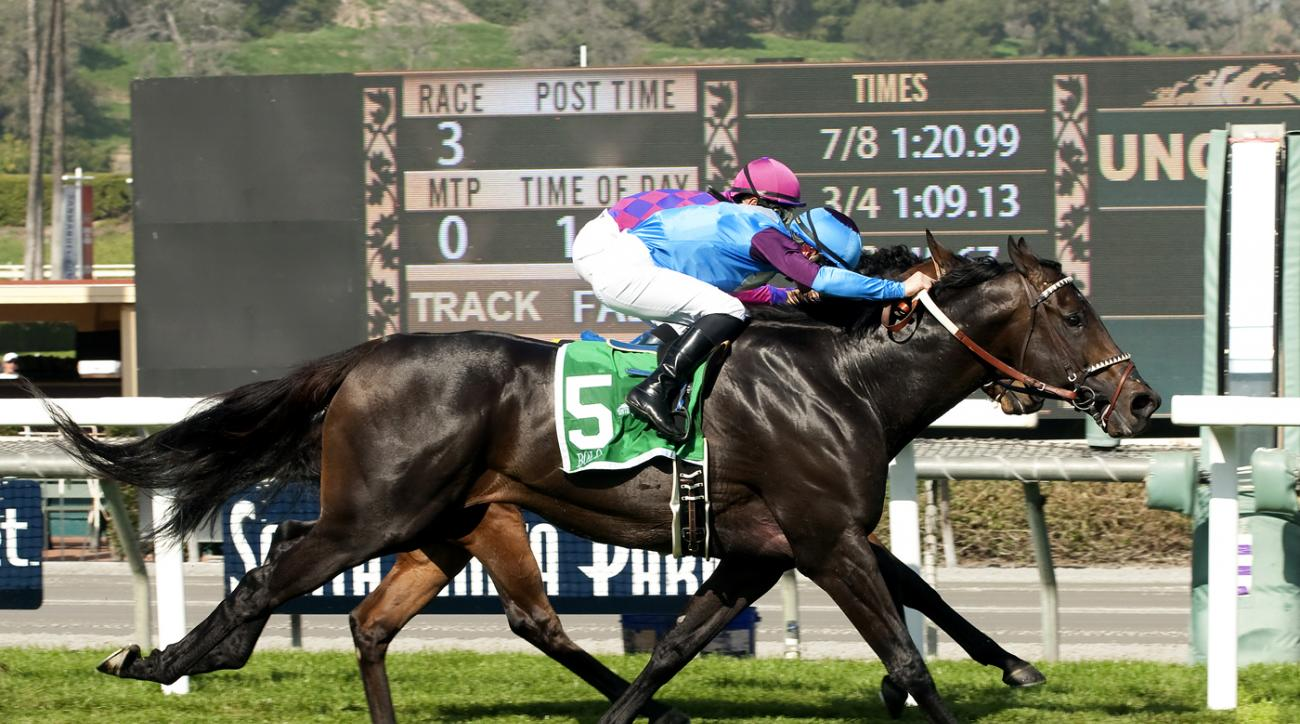 In this photo provided by Benoit Photo, Bolo and jockey Flavien Prat, outside, overtake Obviously (Mike Smith), inside, to win the Grade II, $200,000 Arcadia Stakes, Saturday, Feb. 13, 2016, at Santa Anita Park, in Arcadia Calif. (Benoit Photo via AP)