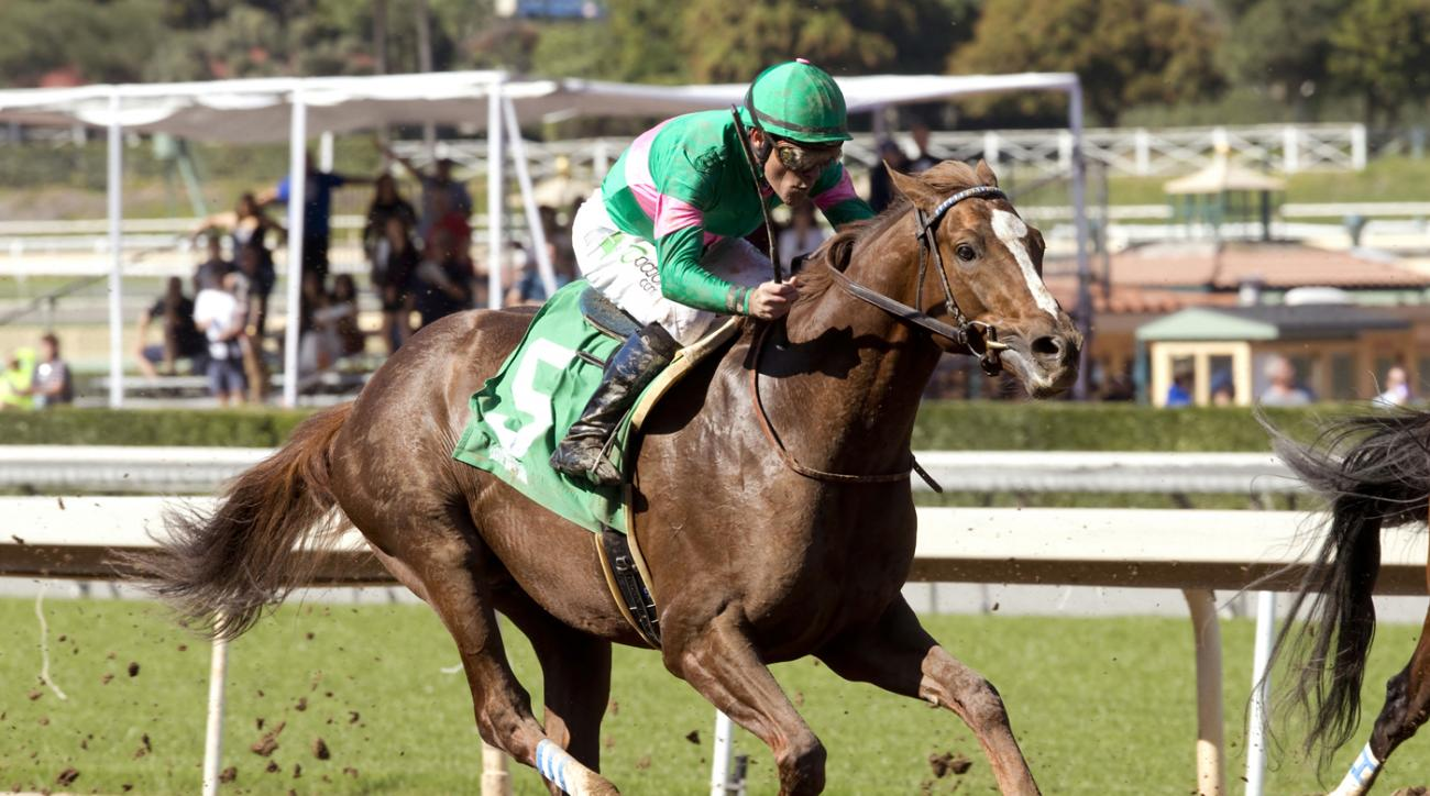 In this photo provided by Benoit Photo, Ziconic, the second foal out of 2010 Horse of the Year Zenyatta, makes his debut in the third race under Gary Stevens in a seven furlong maiden allowance race, Saturday, Feb. 20, 2016, at Santa Anita Park, in Arcadi