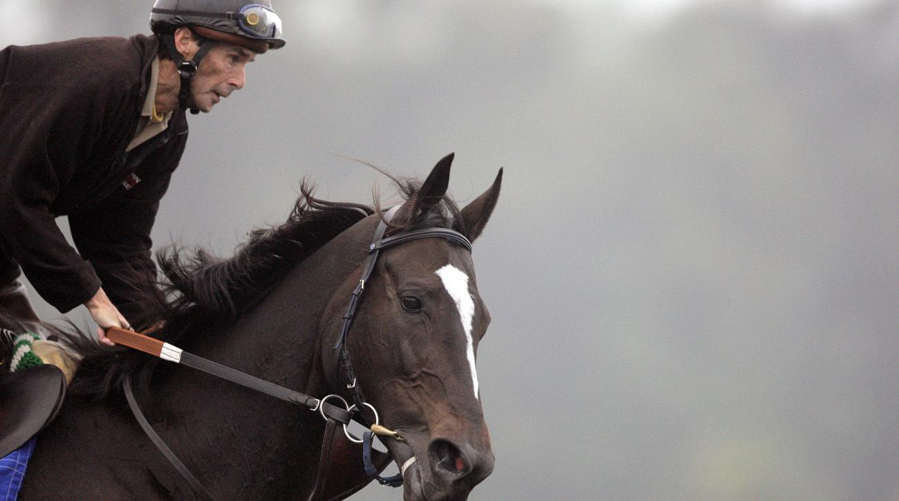 FILE - In this Nov. 5, 2009, file photo, exercise rider Steve Willard takes Zenyatta for a run during a workout for the Breeders' Cup races at Santa Anita in Arcadia, Calif. Willard, a former jockey who worked as the exercise rider for superstar mare Zeny