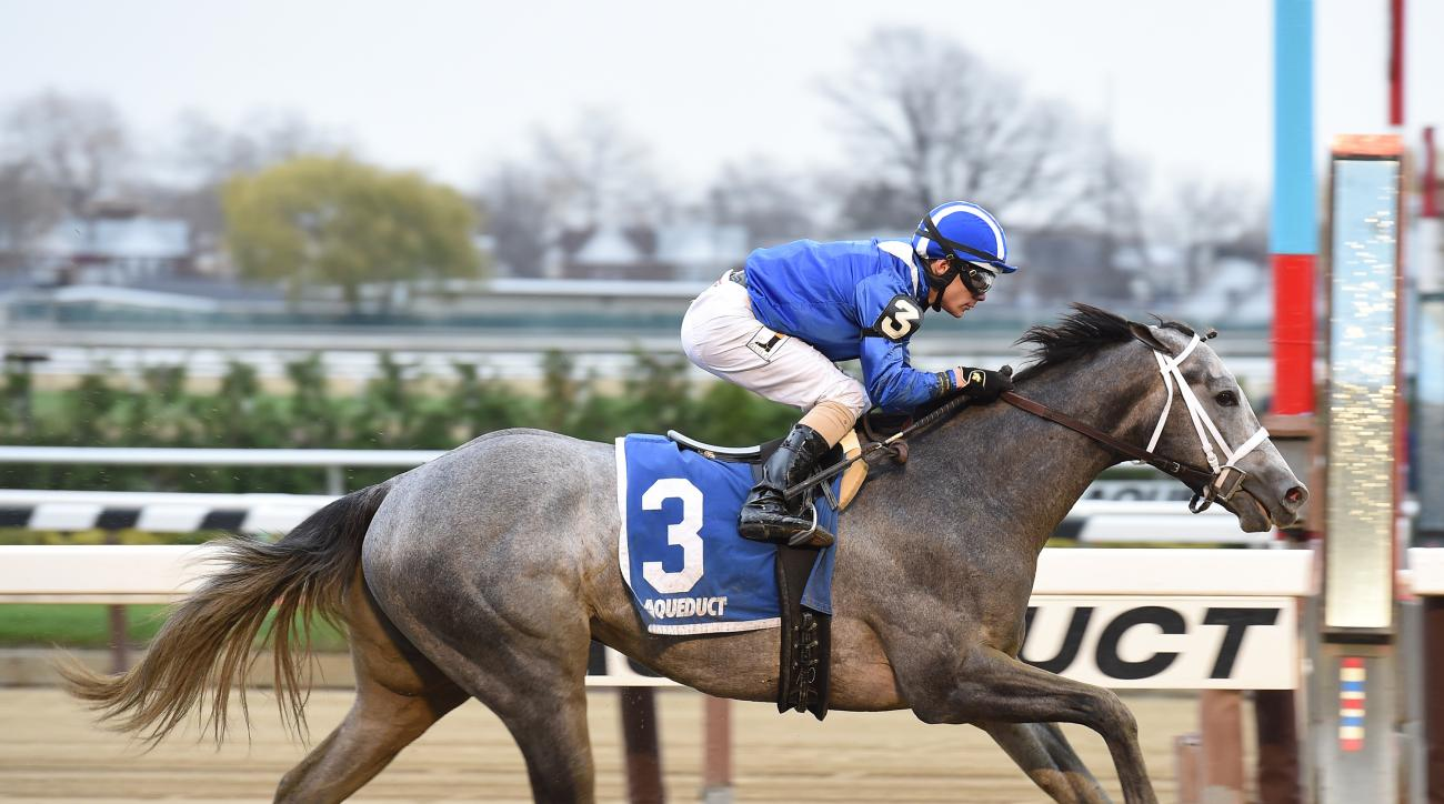 FILE - In this Nov. 28, 2015, file photo provided by the New York Racing Association, Mohaymen, jockey Junior Alvarado up, wins the Remsen Stakes horse race at Aqueduct Racetrack in New York. The next big prep race is Saturday's Fountain of Youth at Gulfs