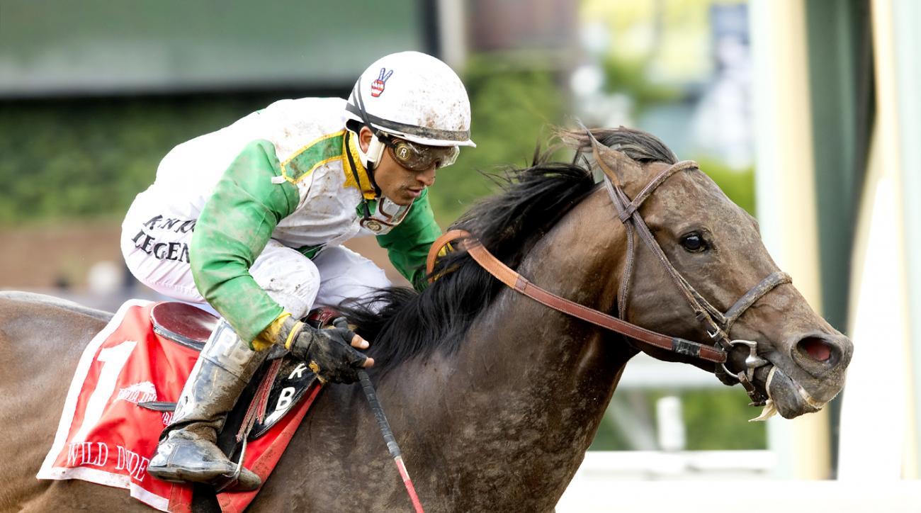 In a photo provided by Benoit Photo, Wild Dude, with jockey Rafael Bejarano, wins the Grade II, $200,000 Kona Gold Stakes horse race Saturday, May 21, 2016, at Santa Anita in Arcadia, Calif. (Benoit Photo via AP)