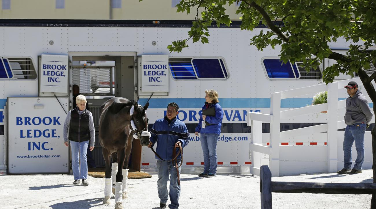 Kentucky Derby winner Always Dreaming arrives at Pimlico Race Course in Baltimore, Tuesday, May 9, 2017. The Preakness Stakes horse race is scheduled to take place May 20. (AP Photo/Patrick Semansky)