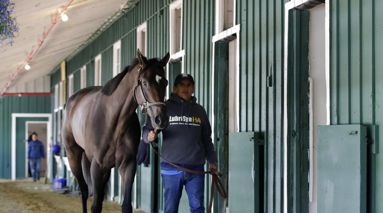 Kentucky Derby winner Always Dreaming walks alongside a groom in a barn at Pimlico Race Course in Baltimore, Tuesday, May 9, 2017. The Preakness Stakes horse race is scheduled to take place May 20. (AP Photo/Patrick Semansky)