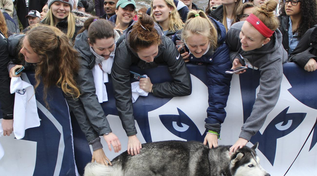 Fans pet University of Connecticut mascot Jonathan, the Husky, during a send-off rally for the Connecticut women's basketball team outside Gampel Pavilion in Storrs, Conn., Tuesday, March 28, 2017, as they prepare to board a bus to depart for the Final Fo