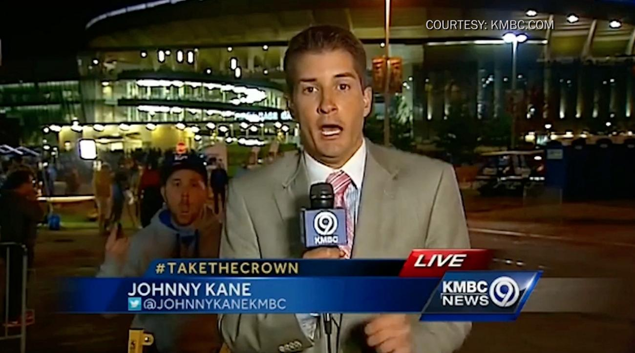 royals fan scares reporter