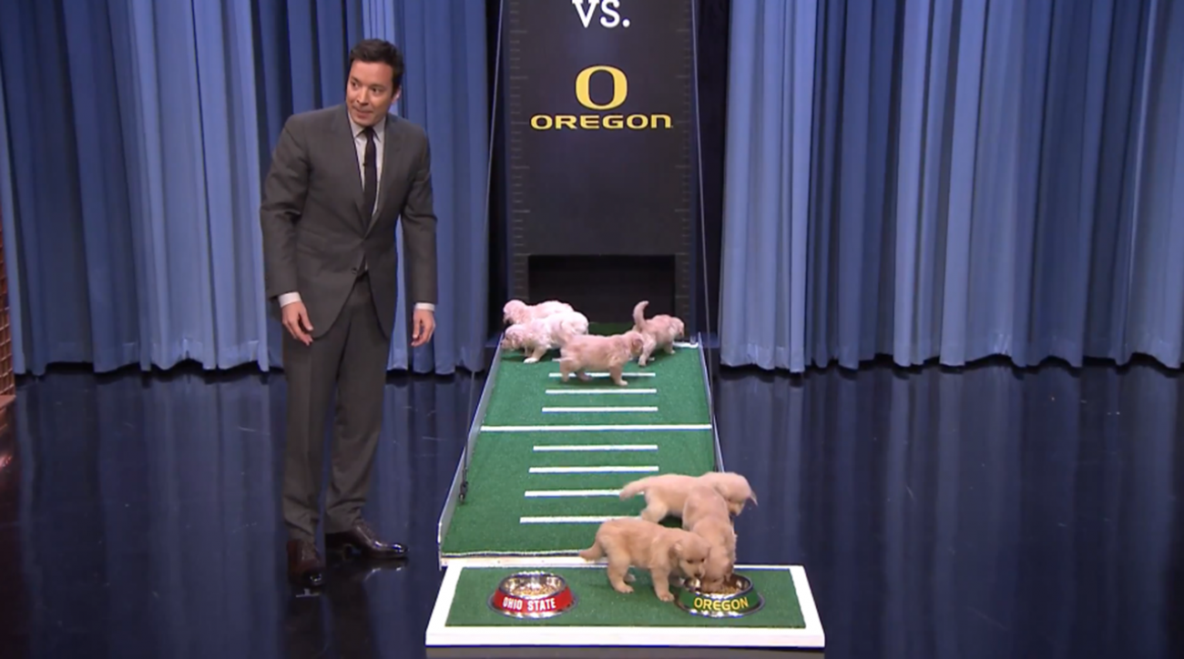 jimmy fallon puppies national champion