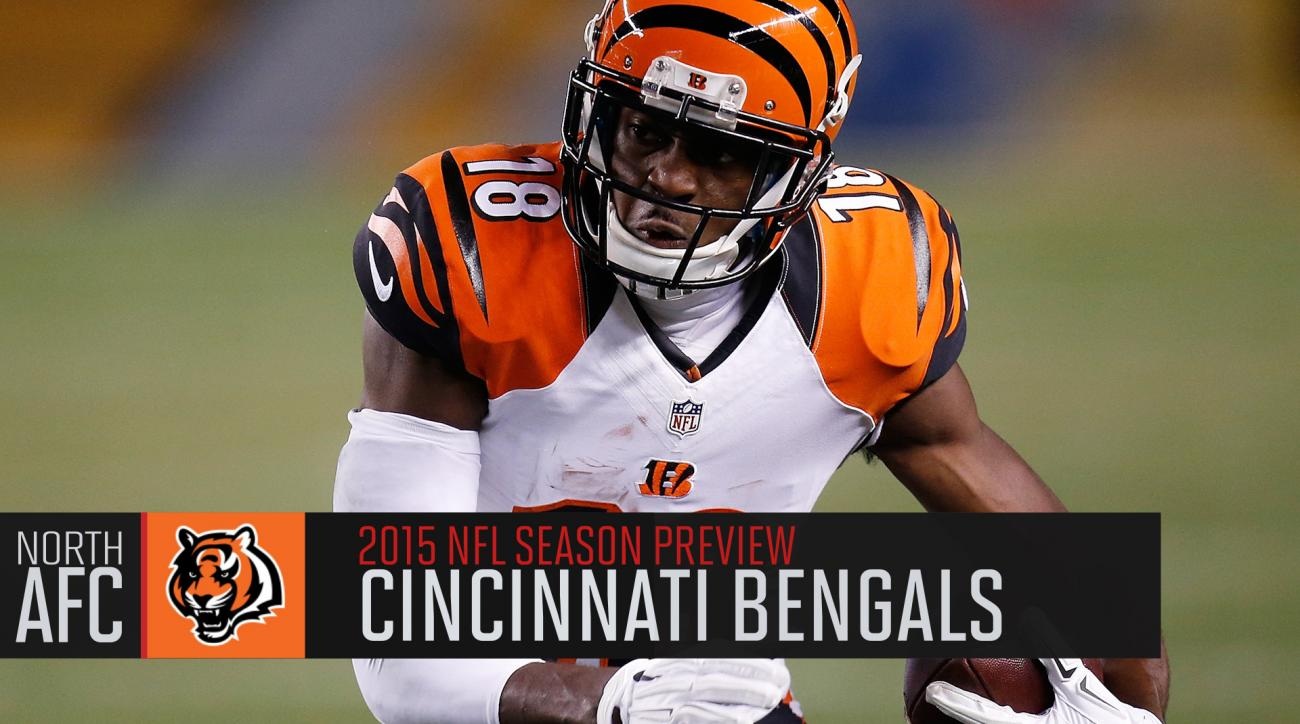 Cincinnati Bengals 2015 season preview