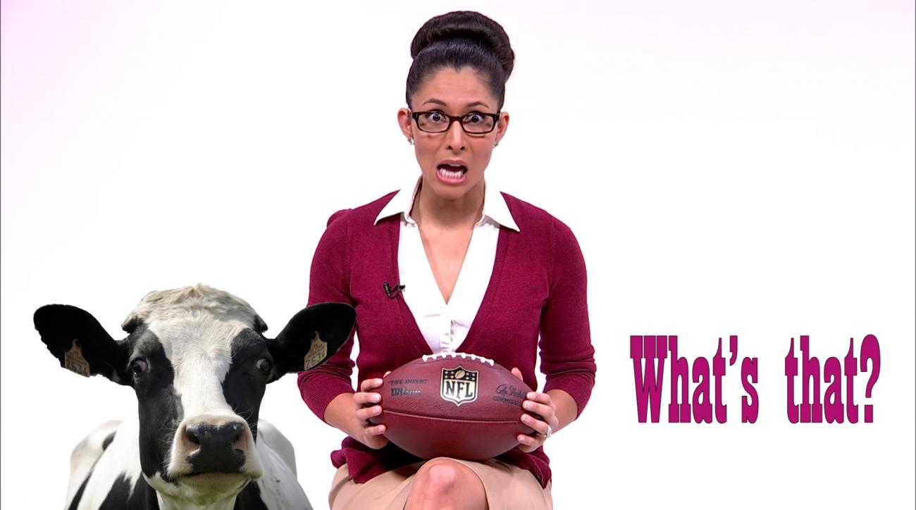 Mustard Minute Useless Facts: Ridiculous number of cows used to make NFL footballs IMG