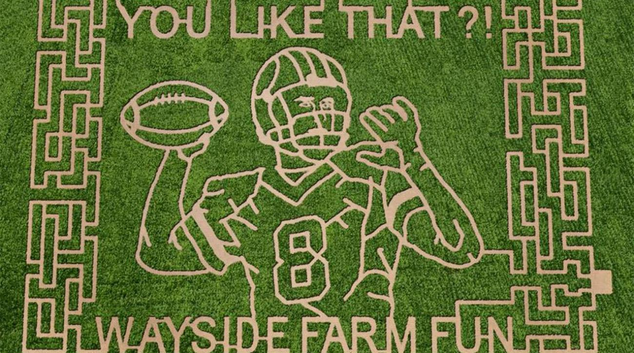 Redskins QB Kirk Cousins honored with corn maze